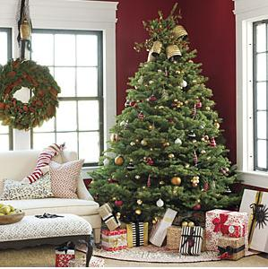 christmas tree feng shui resized 600 Do you plan to put ...