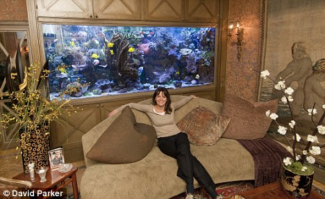 Feng Shui Fish Tank To Improve Your Wealth Amp Fortune